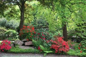 20 - Blumenpracht im Garten Talmühle